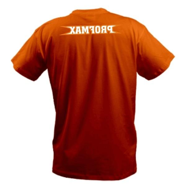 где купить футболку тектоник. футболка с винни пухом.